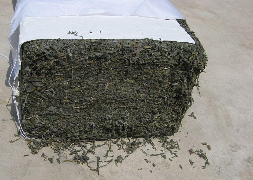 Сухая морская капуста из Китая